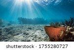 "Ship Wreck ""tugboat "" In ..."