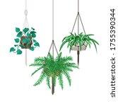 vector set of decorative... | Shutterstock .eps vector #1755390344
