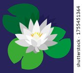 Flower And Leaves Of Lotus ...