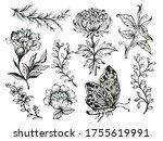 black and white outline...   Shutterstock . vector #1755619991