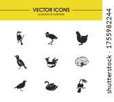 fauna icons set with phoenix ...
