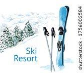 Ski Accessories  Poles And A...