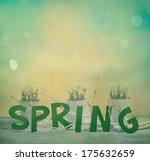 Spring background. Spring letters with flowers and blurred background. Spring concept. - stock photo