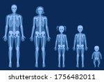 human woman  man  girl  boy and ... | Shutterstock .eps vector #1756482011