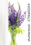 lupines bouquet purple colors... | Shutterstock . vector #1756602314