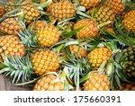 Pineapple Tropical Fruit