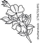 flower design art sketch tattoo ...   Shutterstock .eps vector #1756731491