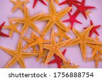Heap Of Starfishes. Natural...
