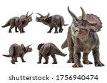 Triceratops   Dinosaur On White ...