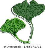 vector drawing of ginkgo biloba.... | Shutterstock .eps vector #1756971731