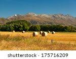 Neat Round Haystacks On The...
