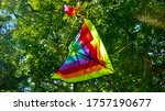 Kite Stuck In The Tree
