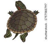 pet turtle red eared slider... | Shutterstock .eps vector #1757583797