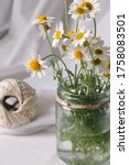 conceptual rustic jar vase... | Shutterstock . vector #1758083501