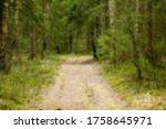 defocused background of forest  ... | Shutterstock . vector #1758645971