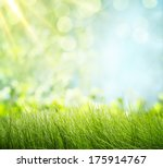 natural backgrounds | Shutterstock . vector #175914767