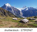 tourist hiking in swiss alps | Shutterstock . vector #17592967