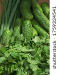green fresh set of organic... | Shutterstock . vector #1759324541