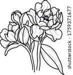 peony flower art work...   Shutterstock .eps vector #1759371677