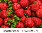 beautiful fresh ripe... | Shutterstock . vector #1760325071