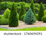 Landscaping Of A Backyard...