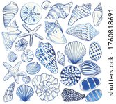 Set Of Blue Seashells And...