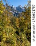 Sunny idyllic colorful autumn alpine scene. Peaceful rocky mountain view from hiking path near Almsee lake, Upper Austria. - stock photo