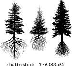 Illustration With Three Firs...