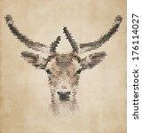 Deer Portrait Made Of...