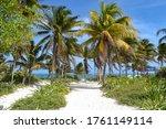 Tropical White Caribbean Sandy...