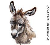 Donkey Head Digital Painting ...