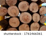 Wood Stacked In A Pulp Mill. I...