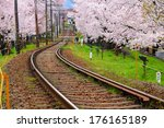Sakura Tree And Train Track