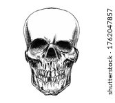 illustration of scary skull.... | Shutterstock .eps vector #1762047857