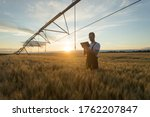Serious Young Caucasian Farmer...