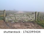 Moldy Wooden Fence Gate In Dir...