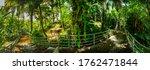 Arboretum Trail In Queen...