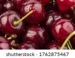 Juicy Cherries Isolated On...