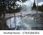 Late Spring in Yellowstone National Park: Cistern Spring Viewed From Across a Side Pool in the Back Basin Area of Norris Geyser Basin