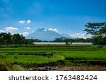 Small photo of Brown land, green paddy fields and green trees on the horizon line, Merapi volcano and whitey blue sky as background, landscape morning view.
