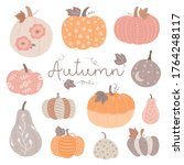 pumpkins of various shapes and... | Shutterstock .eps vector #1764248117
