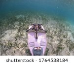 Half Underwater Photography Of...
