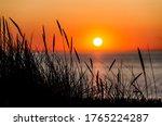 Sunset On The Beach. Close Up...