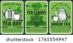 green tea leaves  hot drink cup ... | Shutterstock .eps vector #1765554947