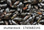 Mussels Background As A Raw...