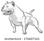 vector sketch drawing pitbull...