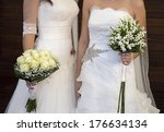 civil wedding of a lesbian... | Shutterstock . vector #176634134