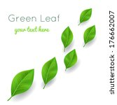 background with green leaves... | Shutterstock .eps vector #176662007