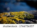 Closeup Photo Stones And Rocks...