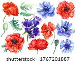 Flowers Set. Poppies  Bluebells ...